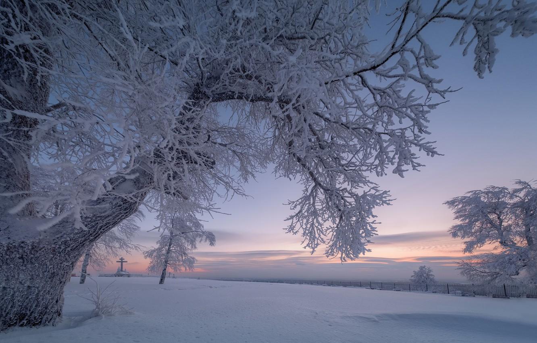 Фото обои зима, снег, деревья, ветки, рассвет, крест, утро, Россия, Пермский край, Белая гора