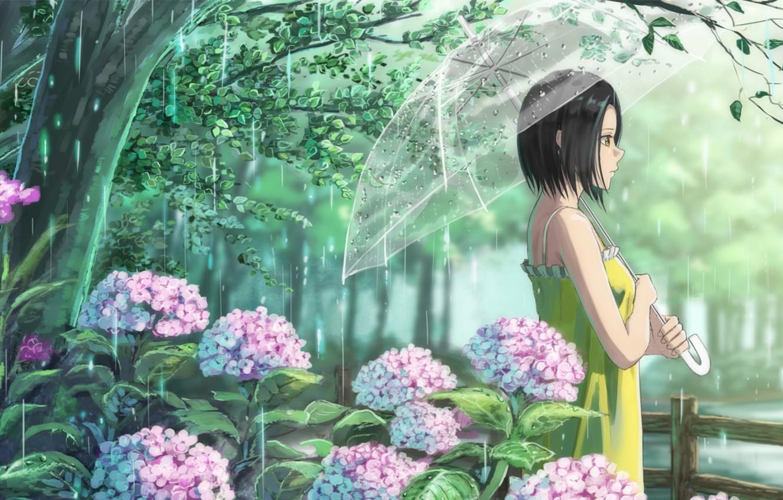 Фото обои девушка, цветы, дождь, зонт