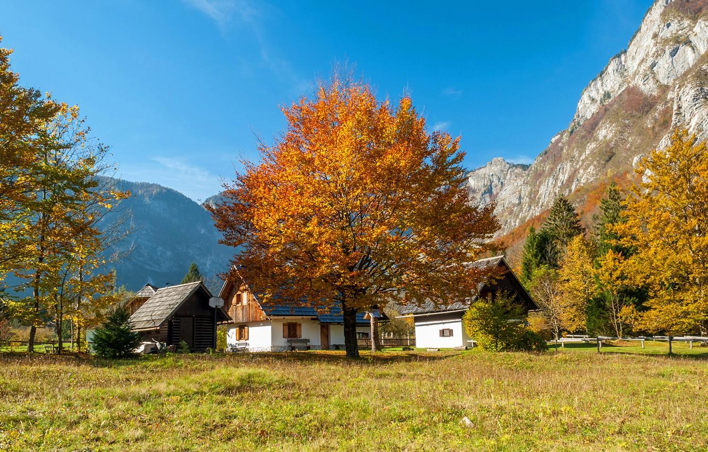 Фото обои осень, лес, небо, трава, солнце, деревья, горы, скалы, домики, Словения, Bohinj