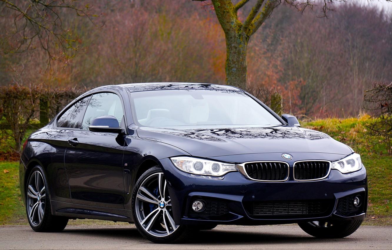 Фото обои машина, деревья, природа, BMW, автомобиль