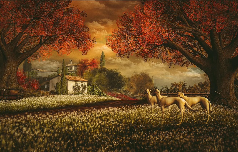 Фото обои осень, собаки, небо, облака, пейзаж, закат, цветы, природа, велосипед, уют, дом, парк, рендеринг, настроение, ветви, …