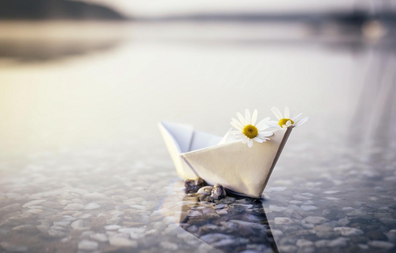 Фото обои река, ромашки, кораблик