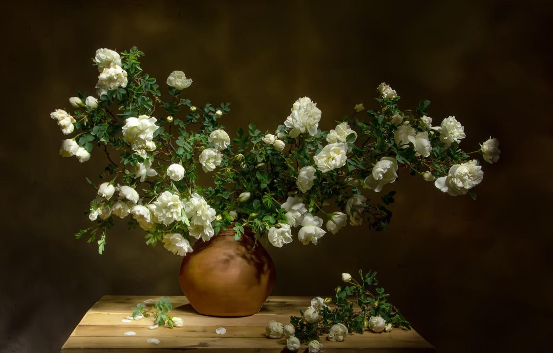 Фото обои ветки, доски, шиповник, ваза, цветки, Татьяна Феденкова