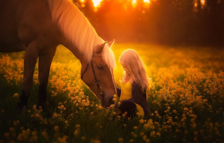 Фото обои лето, конь, девочка