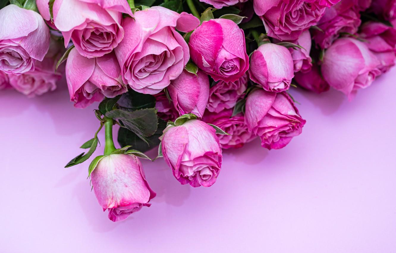 Фото обои цветы, крупный план, розы, букет
