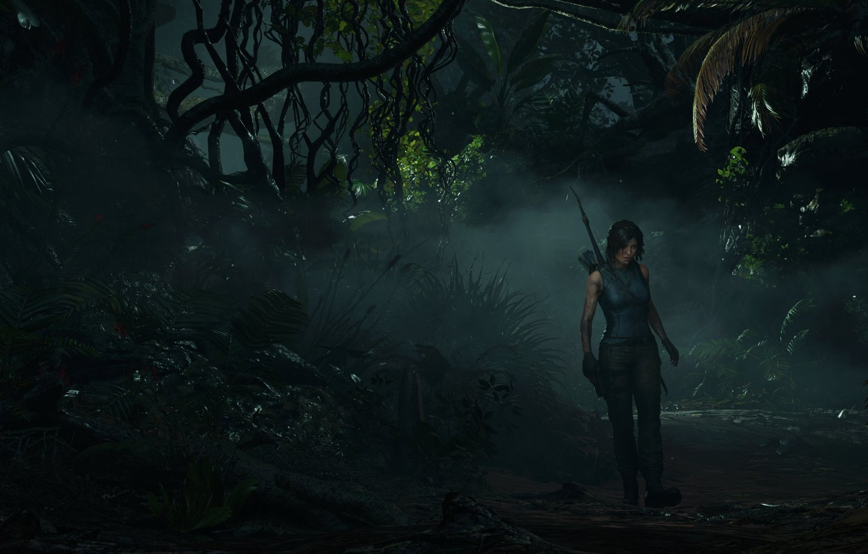 Фото обои туман, лук, грязь, джунгли, Лара Крофт, lara croft, папоротник, jungle, приключение, bow, лиана, mist, adventure, …
