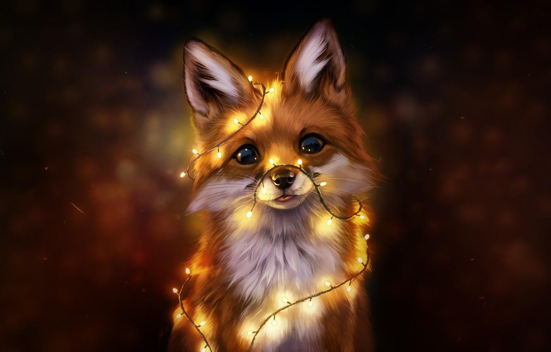 Обои Fox. Лисы foto 7