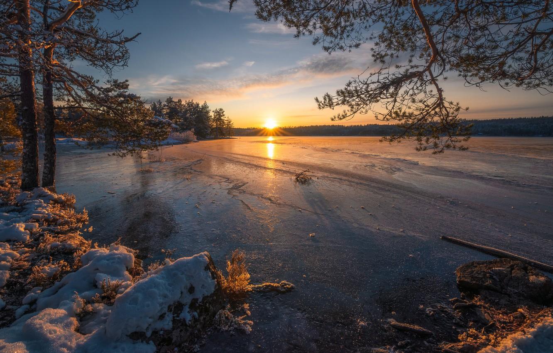 Фото обои зима, деревья, закат, озеро, лёд, Норвегия, сосны, Norway, Рингерике, Ringerike, замёрзшее