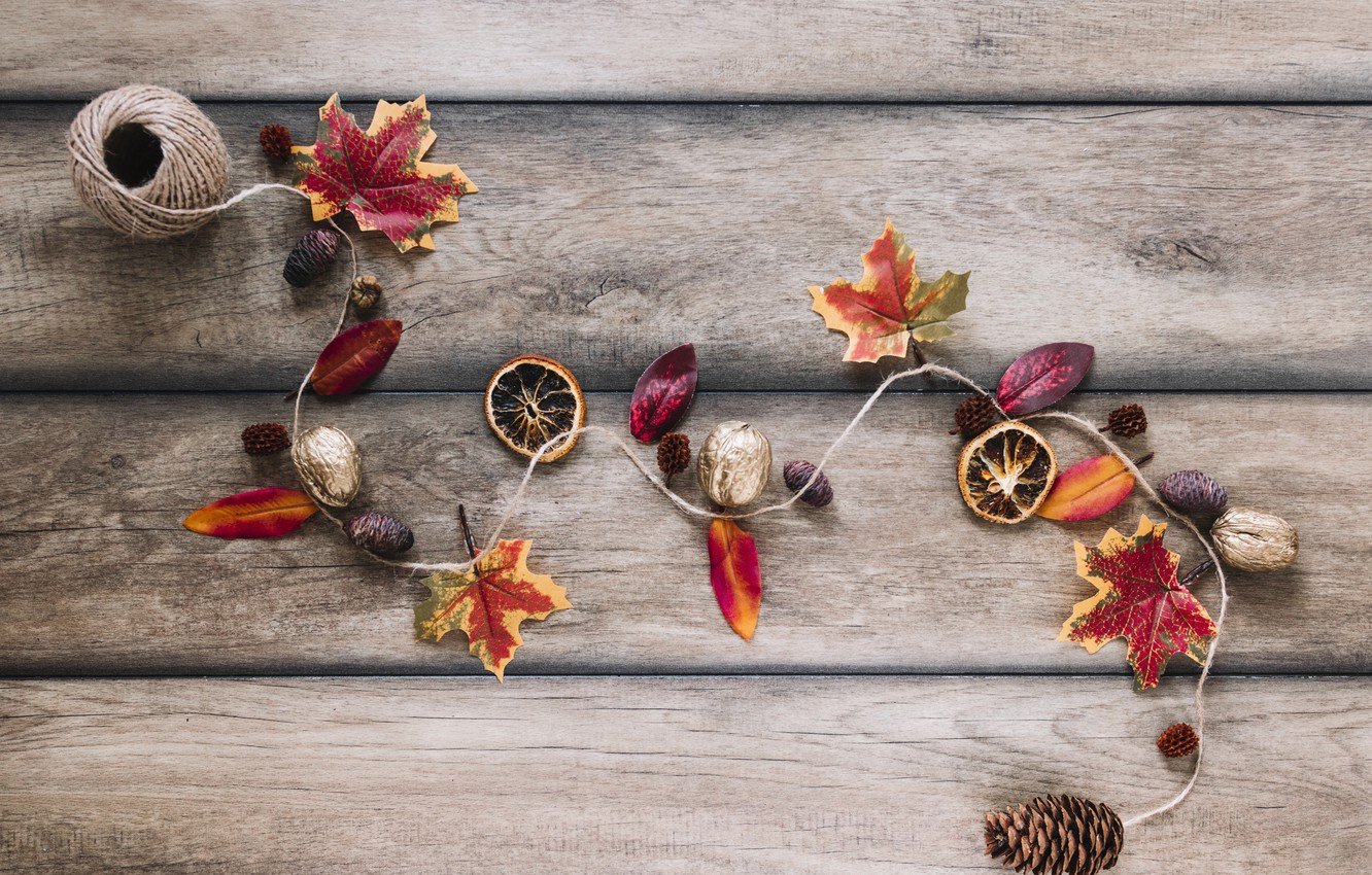 Фото обои осень, листья, фон, дерево, colorful, орехи, шишки, wood, background, autumn, leaves, осенние, maple