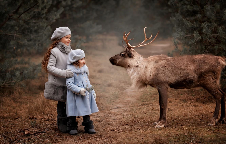 Фото обои дети, животное, девочки, олень, Валентина Ермилова