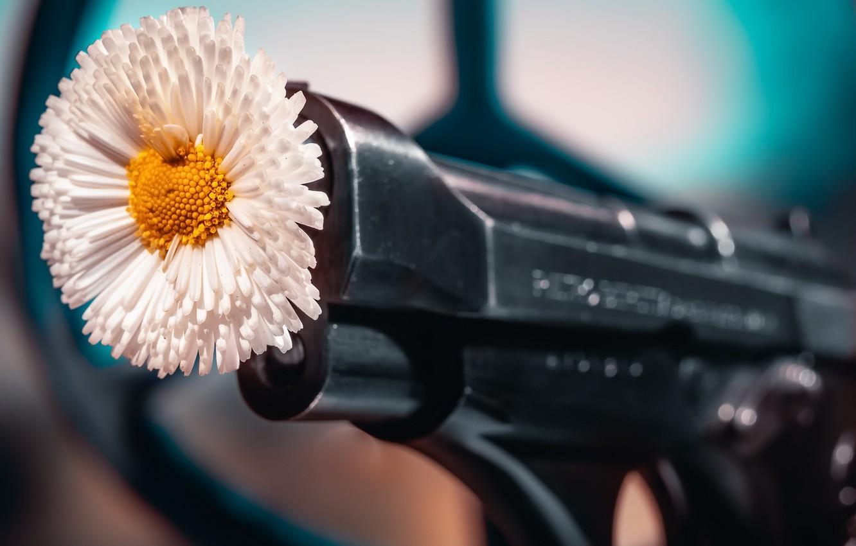 Фото обои цветок, пистолет, фон