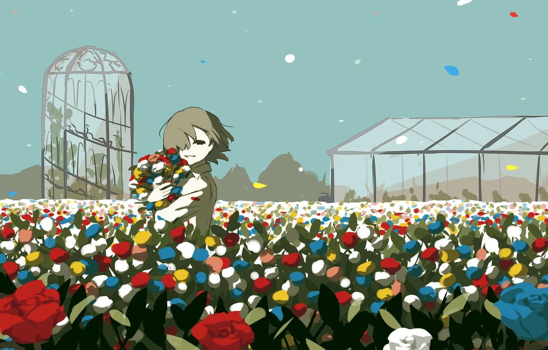 Фото обои розы, мальчик, парник