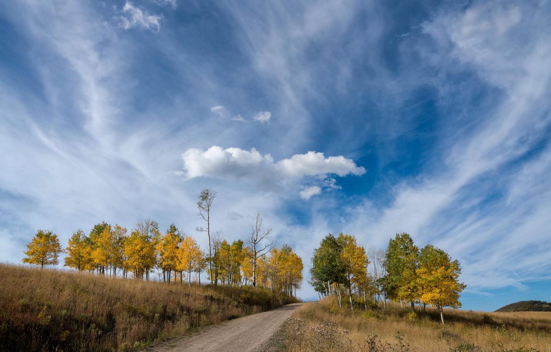 Фото обои дорога, осень, небо