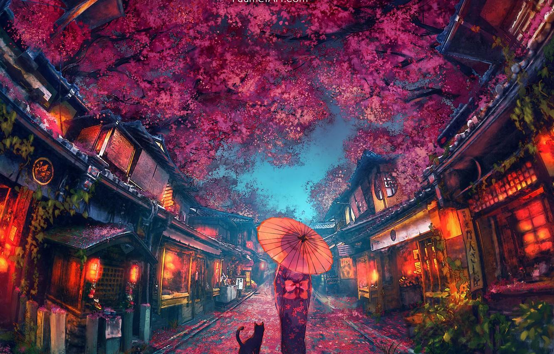 Фото обои зонт, Япония, девочка, кимоно, свет в окнах, вечерний город, красные фонари, чёрная кошка, цветение сакуры, …