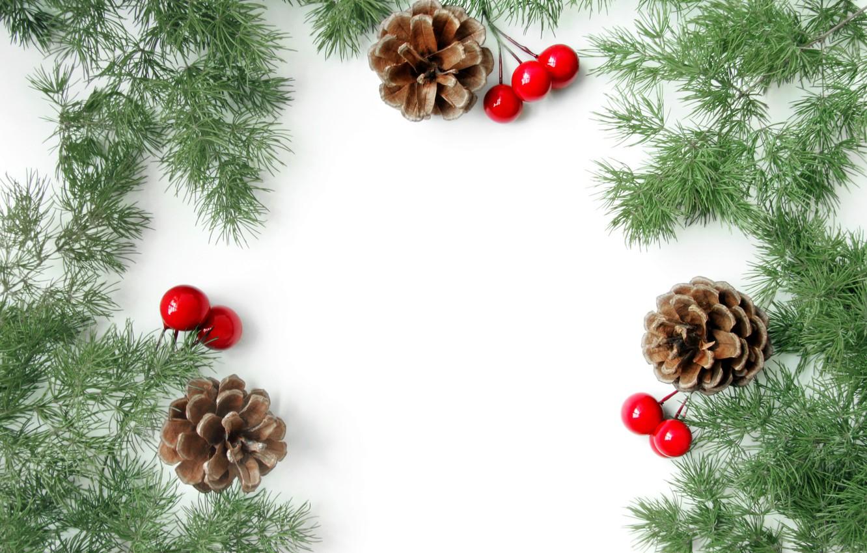 Фото обои ветки, ягоды, Рождество, Новый год, хвоя, открытка, заготовка