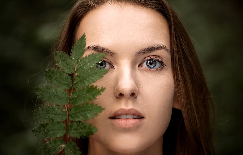 Фото обои взгляд, девушка, лицо, лист, портрет, Роман Инодворский