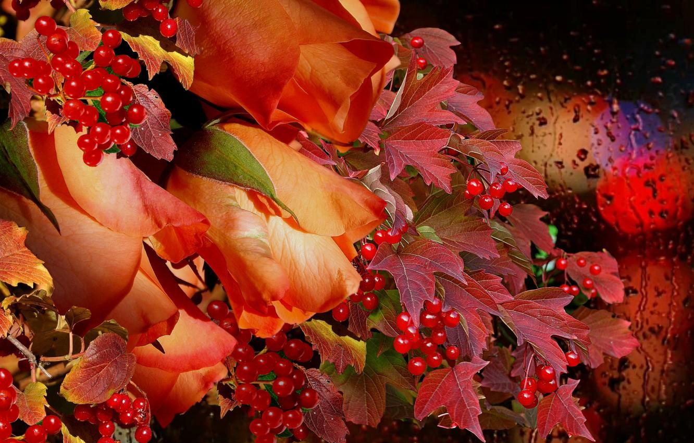 Фото обои осень, дождь, букет, Розы, калина