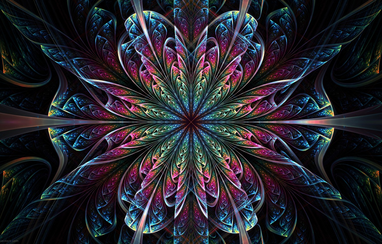 Фото обои цветок, узор, симметрия
