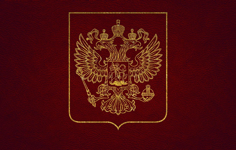 Фото обои кожа, золотой, герб, россия, красная, двуглавый орел, герб России