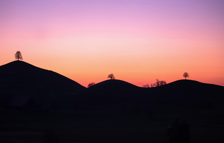 Фото обои деревья, закат, горы
