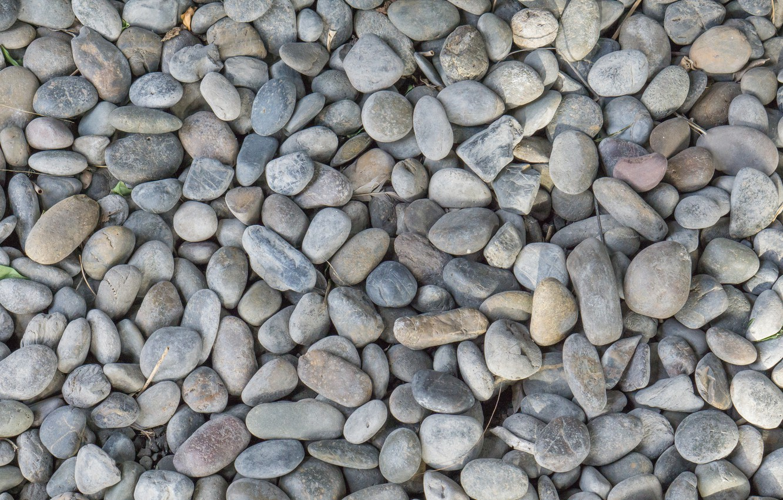 Фото обои пляж, галька, камни, фон, white, белые, beach, texture, marine, морские, pebbles
