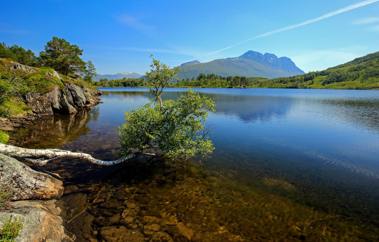Фото обои горы, озеро, дерево, Норвегия, Romsdal