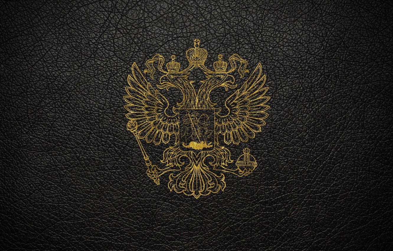 Обои царапины, герб России, stena, серый, россия, герб, двуглавый орел. Разное foto 9