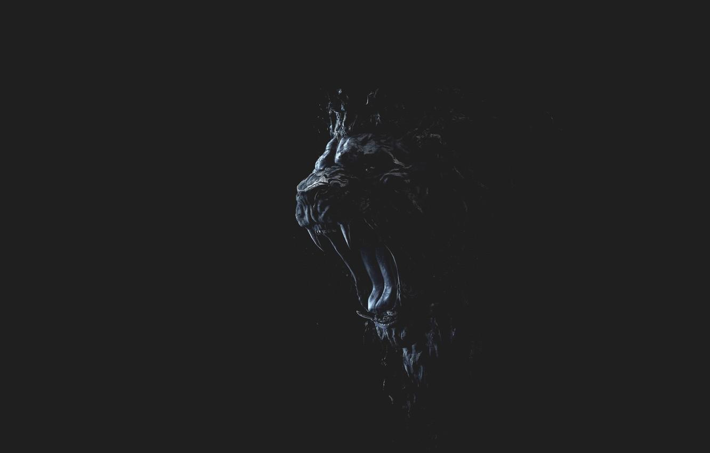 Фото обои Лев, Ярость, Minimalism