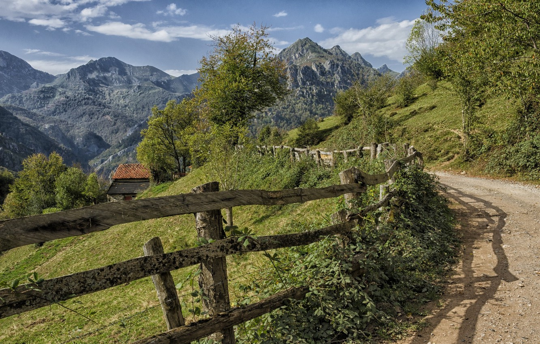 Фото обои дорога, пейзаж, природа, забор, красота