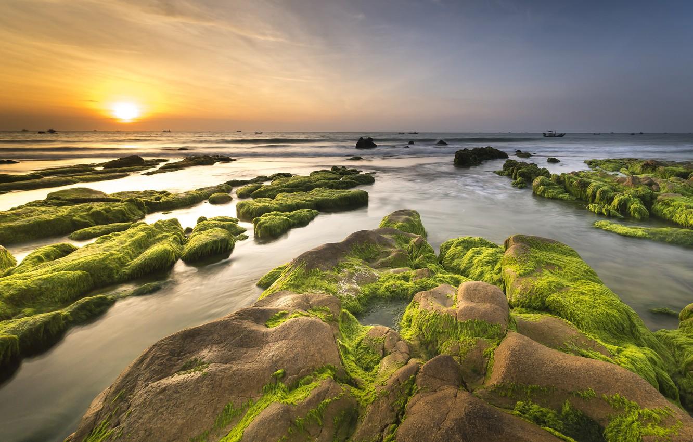 Фото обои море, небо, солнце, водоросли, пейзаж, закат, природа, камни, рассвет, берег, побережье, горизонт, водоем, каменистый берег