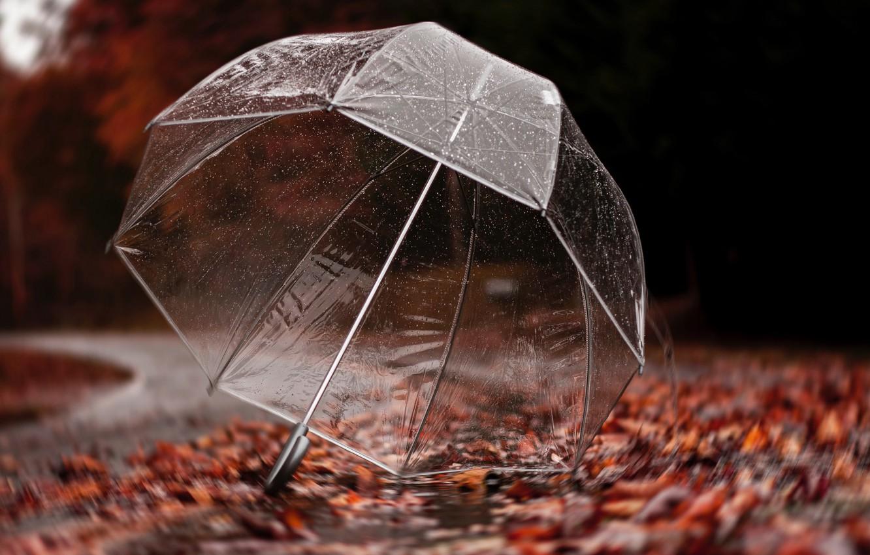 Обои дождь, зонт, капли. Разное foto 15