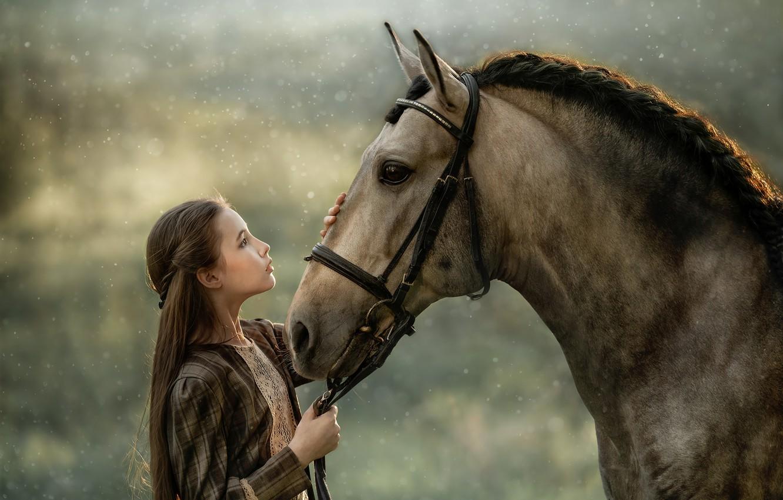 Фото обои конь, лошадь, дружба, девочка