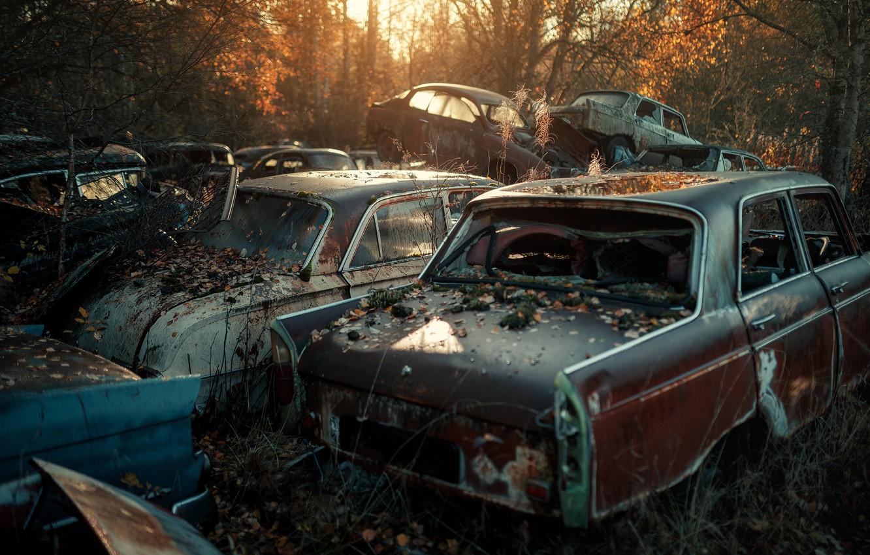 Обои машины, лом. Автомобили foto 6