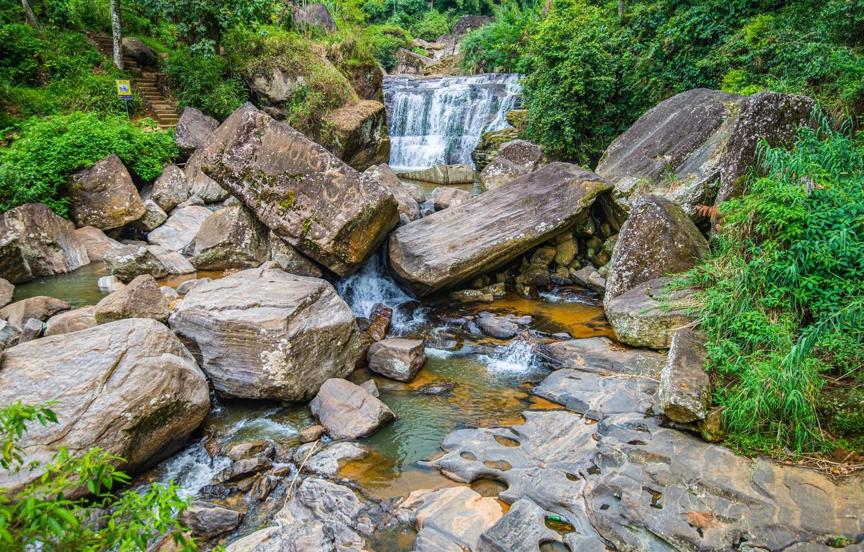 Фото обои лес, камни, водопад, речка, Шри-Ланка, Nuwara Eliya