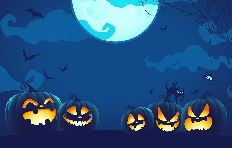 Фото обои spider, Halloween, moon, blue, night, cat, holiday, digital art, bats, pumpkins, black cat, spooky, spider …