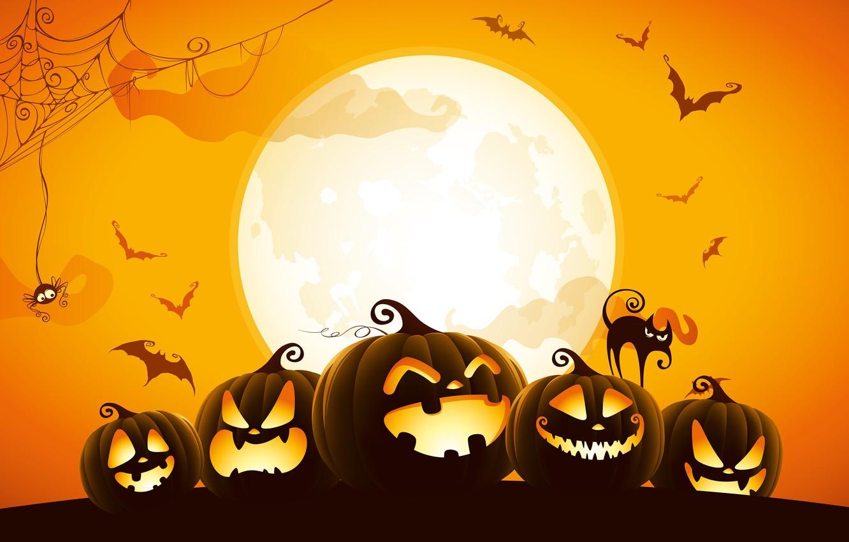 Фото обои spider, Halloween, moon, cat, orange, holiday, digital art, bats, pumpkins, black cat, spooky, spider web