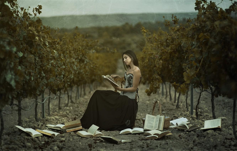 Фото обои девушка, книги, виноградник