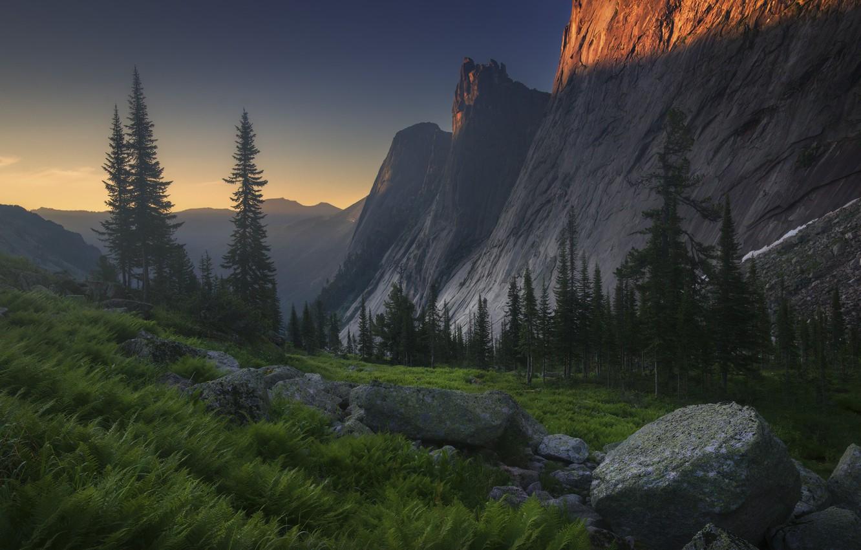 Фото обои лес, лето, свет, горы, камни, скалы, вершины, вечер, склон, папоротник, валуны