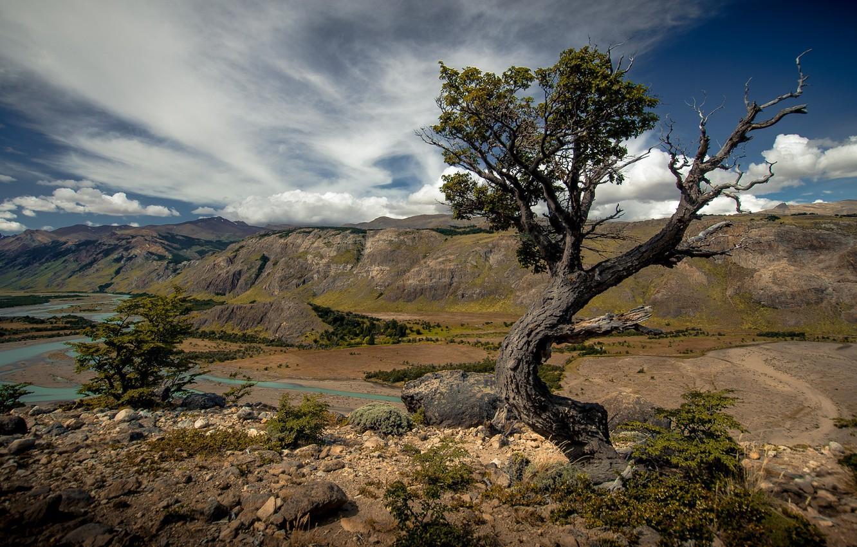 Фото обои пейзаж, горы, природа, река, дерево, ландшафт, красота