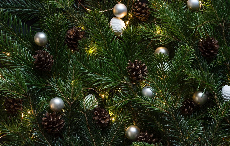 Фото обои green, christmas tree, christmas lights