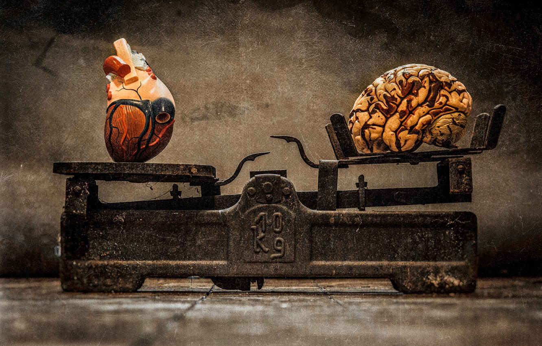 Фото обои сердце, мозг, весы