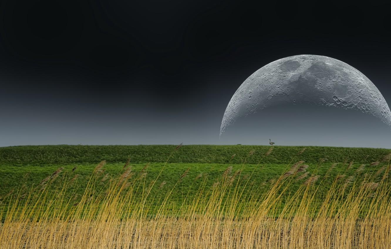 Фото обои природа, земля, луна