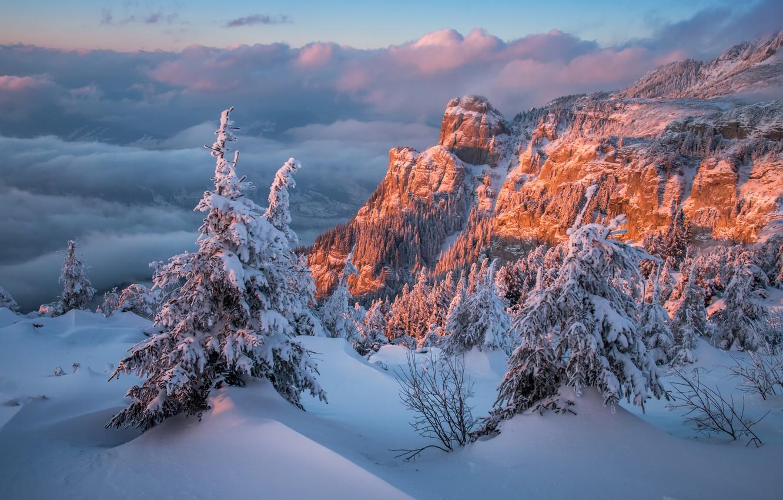 Фото обои зима, облака, снег, деревья, пейзаж, закат, горы, природа, скалы, ели