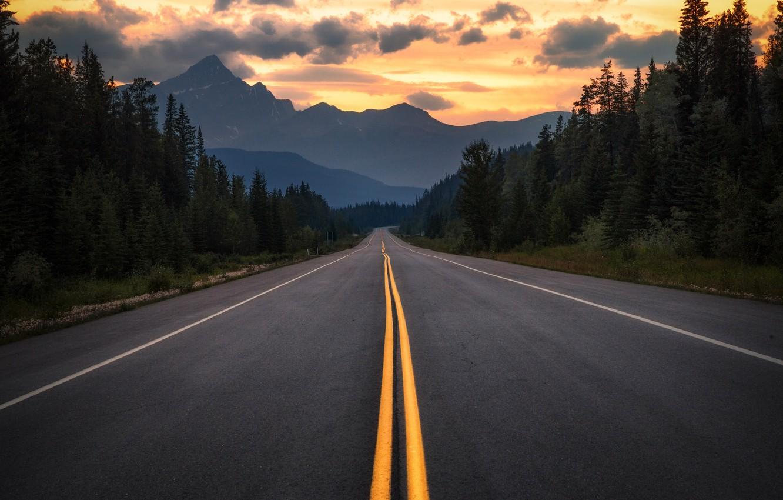 Обои дорога, лес, горы, вечер, Канада, Альберта картинки ...