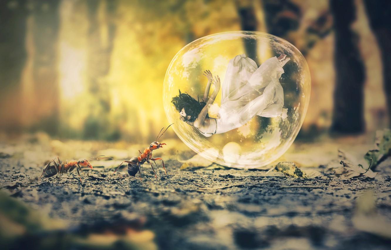 Фото обои мечта, девушка, движение, фантазия, dream, листва, сон, муравьи, girl, fantasy, белое платье, white dress, мыльный …