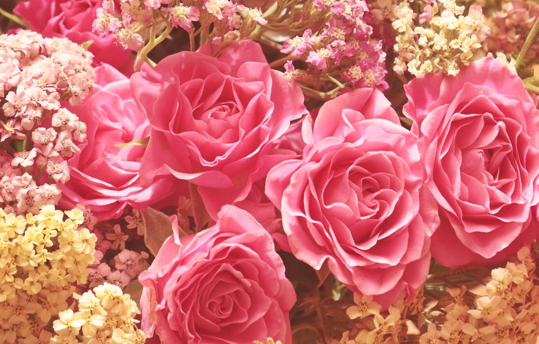 Фото обои цветы, розы, букет, розовые