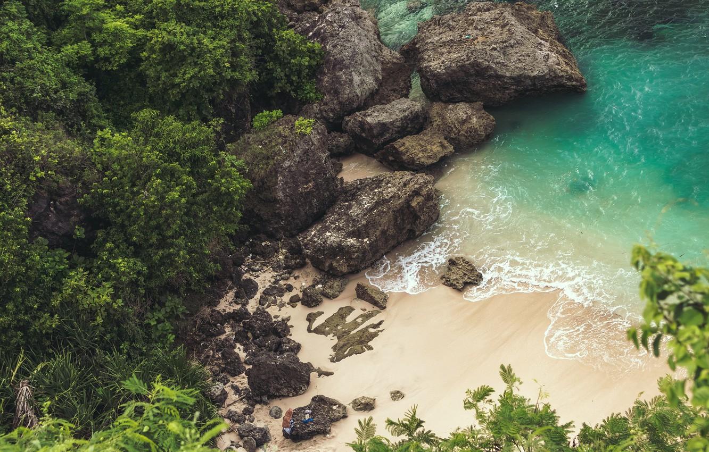 Фото обои trees, sea, landscape, Beach, nature, rocks, sand, plants, cliff, top view