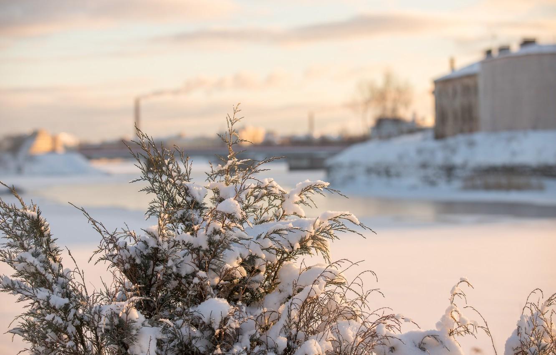 Фото обои холод, зима, снег, город, рассвет, мороз, санкт-петербург, холодно, снежно, выборг