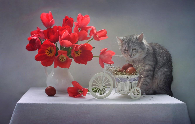 Фото обои кот, цветы, фон, яйца, тюльпаны, корзинка, котейка, Светлана Ковалева