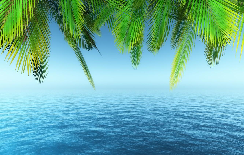 Фото обои море, пляж, лето, небо, пальмы, summer, beach, sea, paradise, palms, tropical